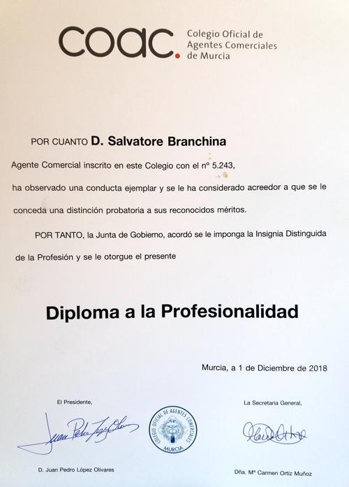 Diploma de profesionalidad